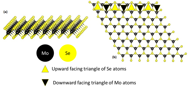 Hexagonal MoSe2 monolayer